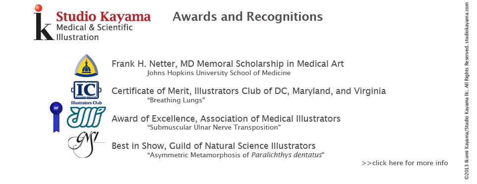 Studio Kayama has been the Recipient of Multiple awards