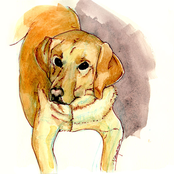 watercolor dog portrait